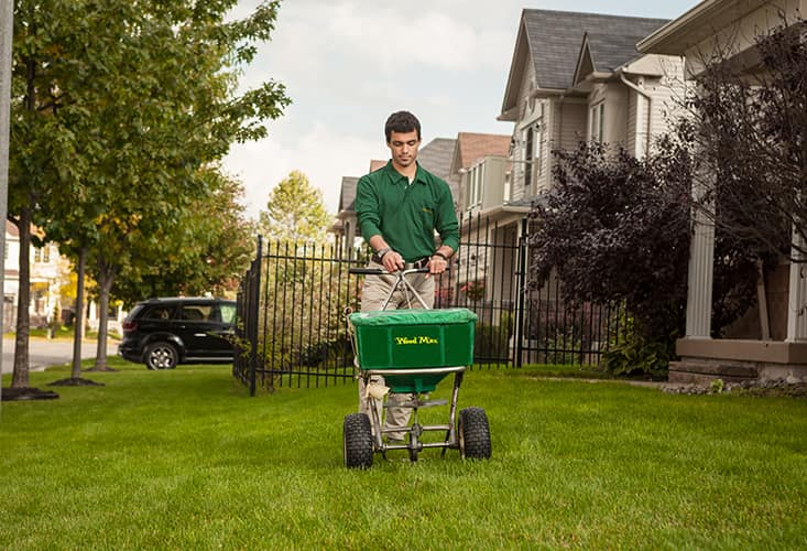 Lawn Care Coupon Farmington Hills